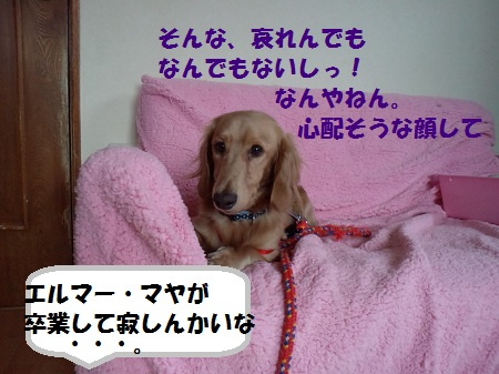 2012103013080004.jpg
