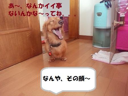 2012110414130000.jpg