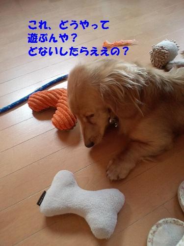 2012110414250001.jpg