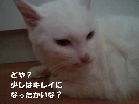 2012110515010000.jpg
