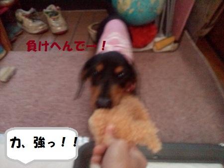 2012110913260001.jpg