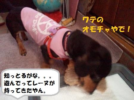 2012110913260002.jpg