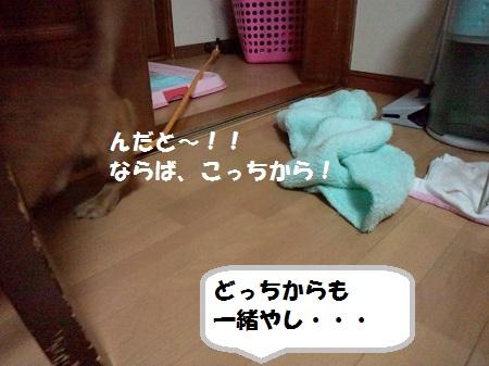 2012111116070001.jpg