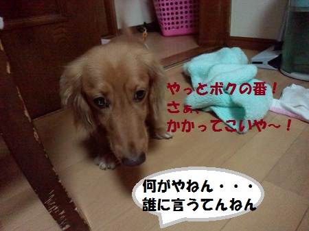 2012111116070004.jpg