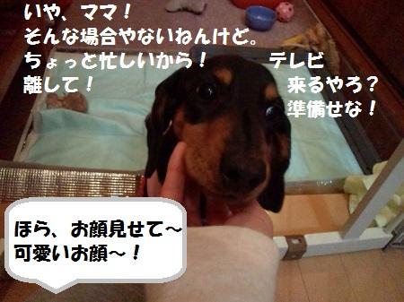 2012111116090003.jpg