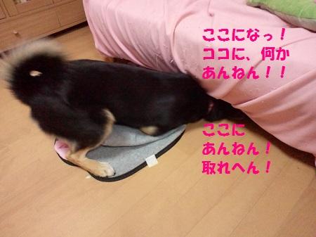2012111821220000.jpg
