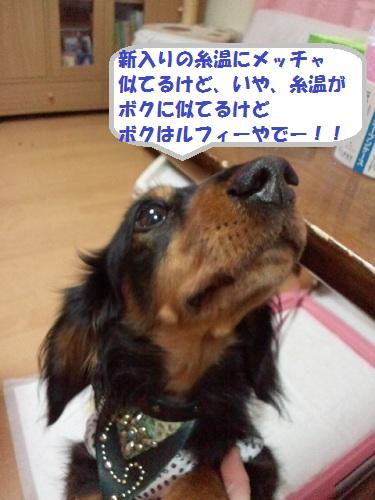2012122122570000.jpg