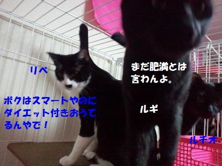 2012122700170001.jpg