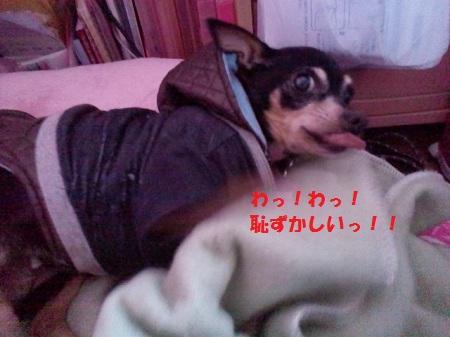 2012122814310000.jpg