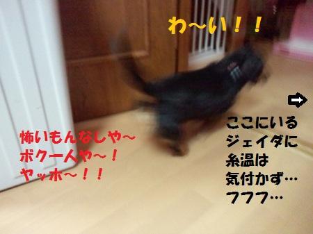 2013010403190000.jpg