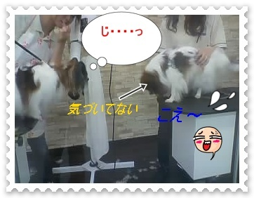 025_20121012122802.jpg