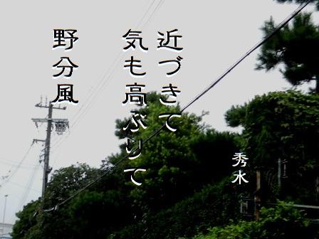 nowakikaze01.jpg