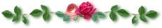 line-r1_20130517124247.jpg
