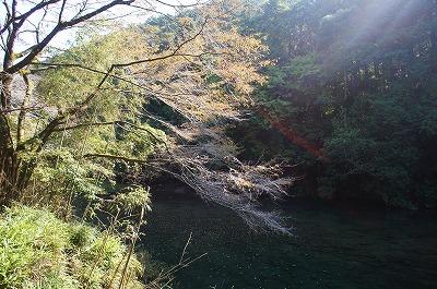 京都神護寺2 025