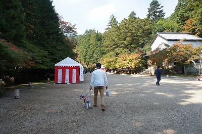 京都神護寺2 040