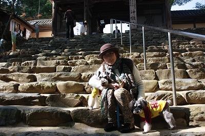 京都神護寺 019