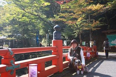 京都神護寺 007