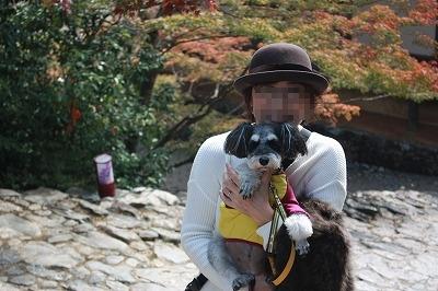 京都神護寺 029