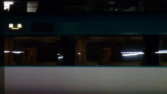P1050286.jpg