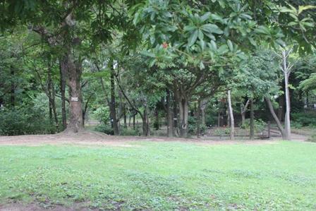 20120715-3.jpg