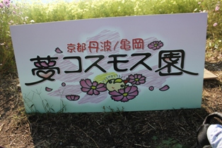 20121021-6.jpg