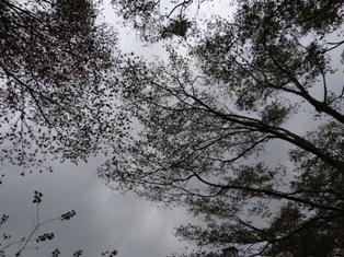 20121027-12.jpg