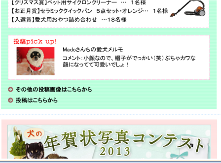 20130101-5.png