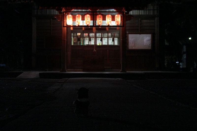 熊野神社初詣 2 130101