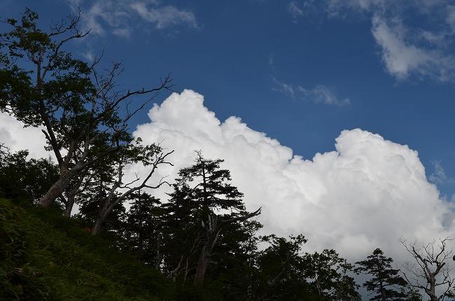 燕岳1 (171)