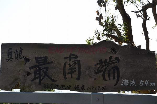 真鶴_141025_1050