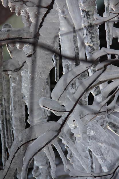 icicle2.jpg