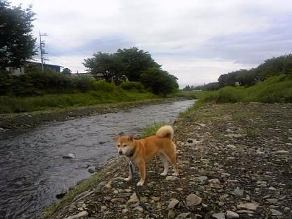2012梅雨4