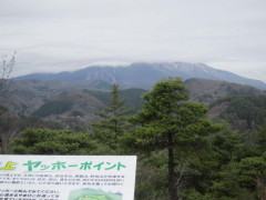 2012_04_27g.jpg