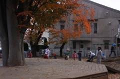 2012_11_12.jpg