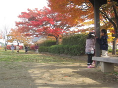 2012_11_13b.jpg
