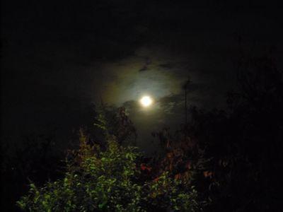 moon_20121129010425.jpg