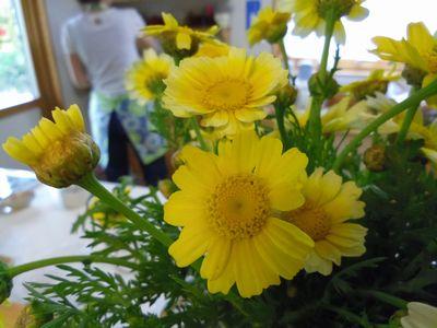 shungiku_20120629000021.jpg