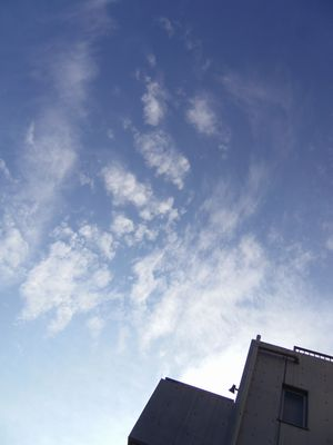 sky0704.jpg