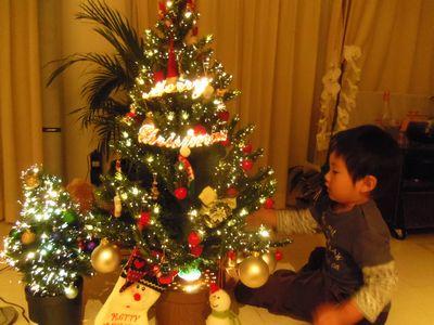 tree2_20121125224448.jpg