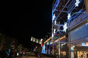 2012-11-14v.jpg
