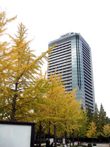 2012-11-9.jpg