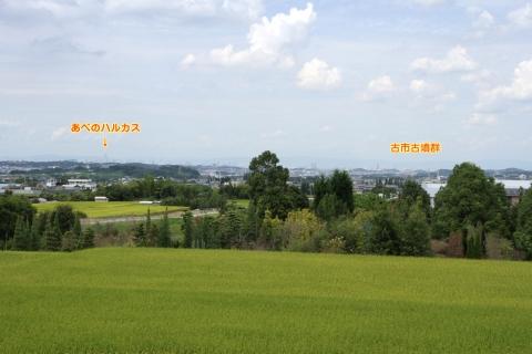 kanayama_2.jpg