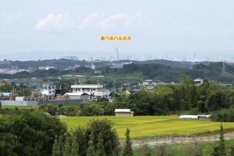 kanayama_3.jpg