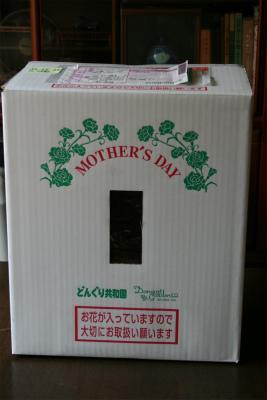 2013.5.9 恵理から母の日 004
