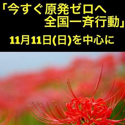12-11-11行動呼びかけ