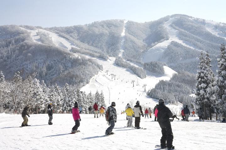 スキージャム勝山8