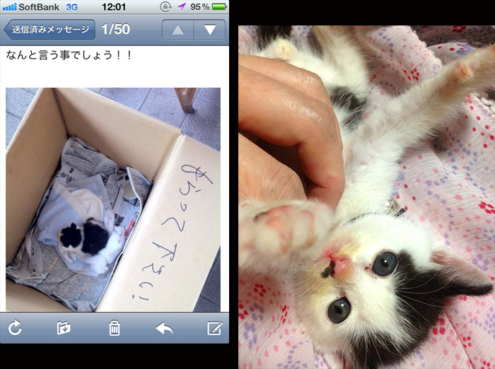 12-9-24-rin-014.jpg