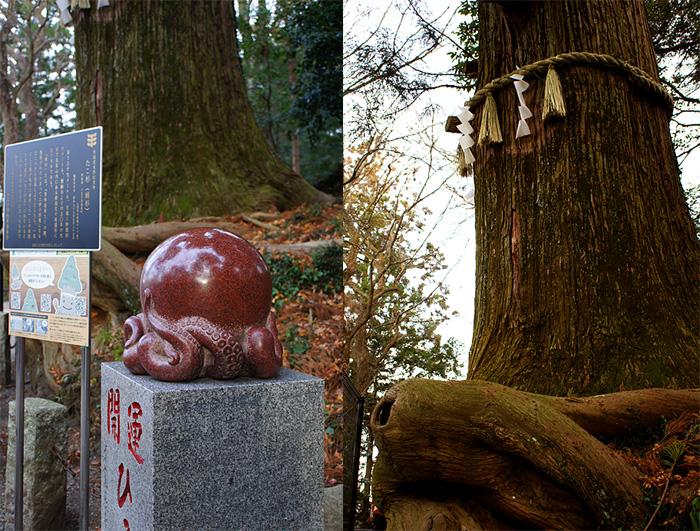 13-1-6-takao-020.jpg