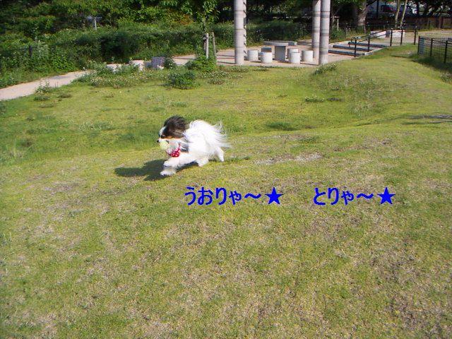 PICT0042.jpg