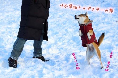 IMG_1504_AZUKI.jpg